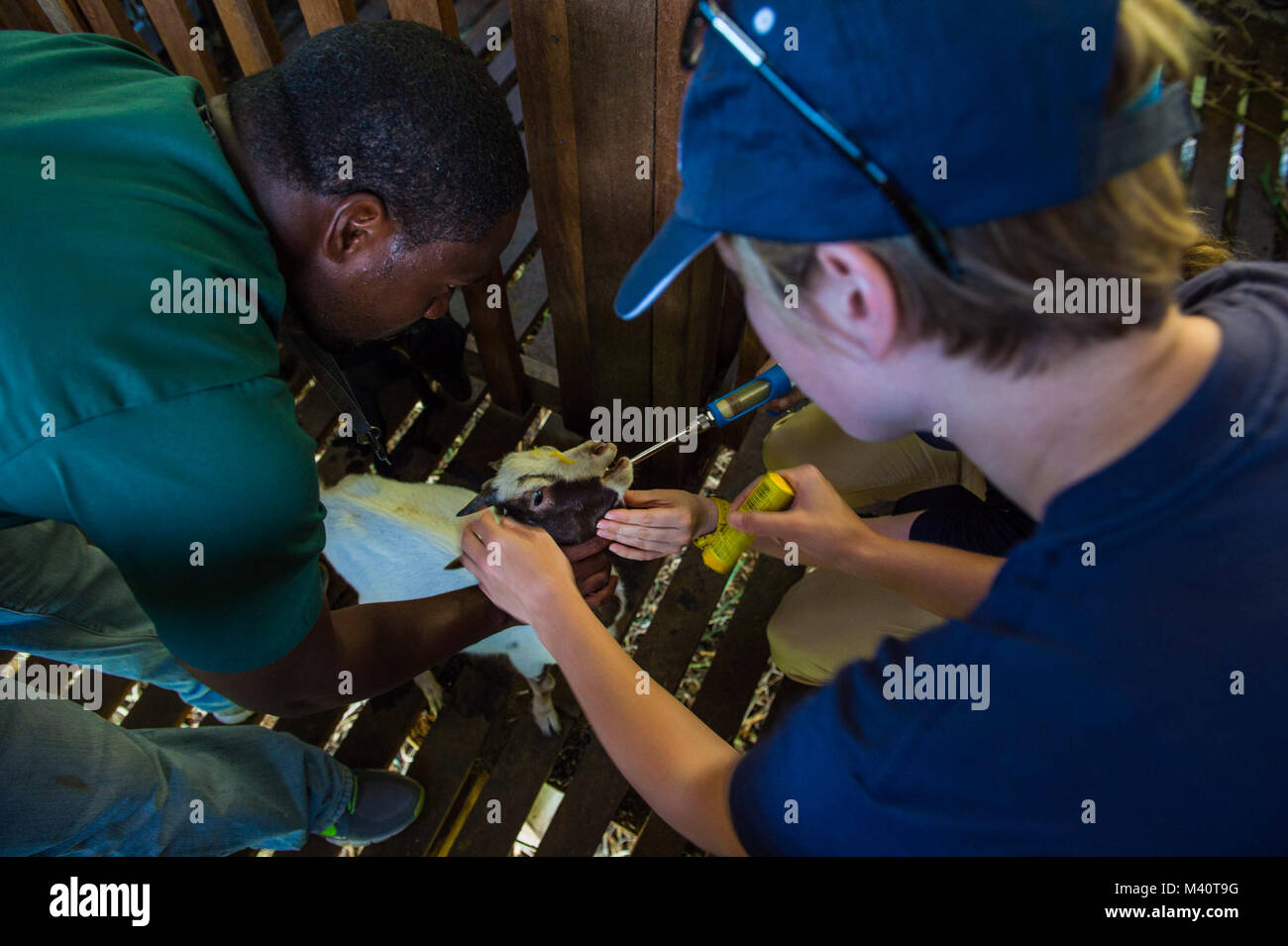150805-N-NK134-012 ROSEAU, Dominica (Aug. 5, 2015) - Volunteers with the non-governmental organization (NGO) World - Stock Image