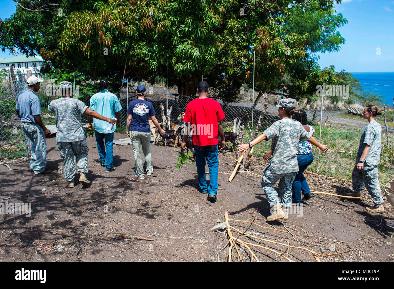 150805-N-NK134-103 PORTSMOUTH, Dominica (Aug. 5, 2015) - Army veterinarians and veterinarian technicians along with - Stock Image