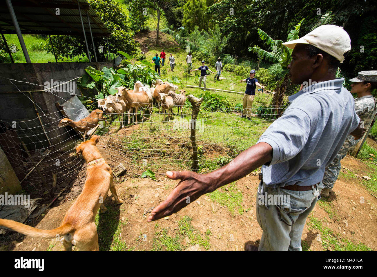 150805-N-NK134-155 PORTSMOUTH, Dominica (Aug. 5, 2015) - Army veterinarian technicians and volunteers with the non - Stock Image