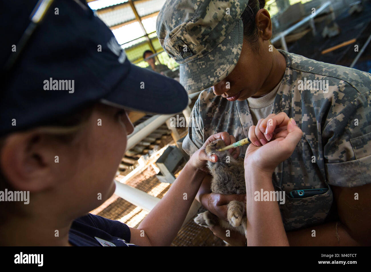 150805-N-NK134-300 PORTSMOUTH, Dominica (Aug. 5, 2015) - Army Sgt. Janina Alaniz, a native of North Bergen, N.J., - Stock Image