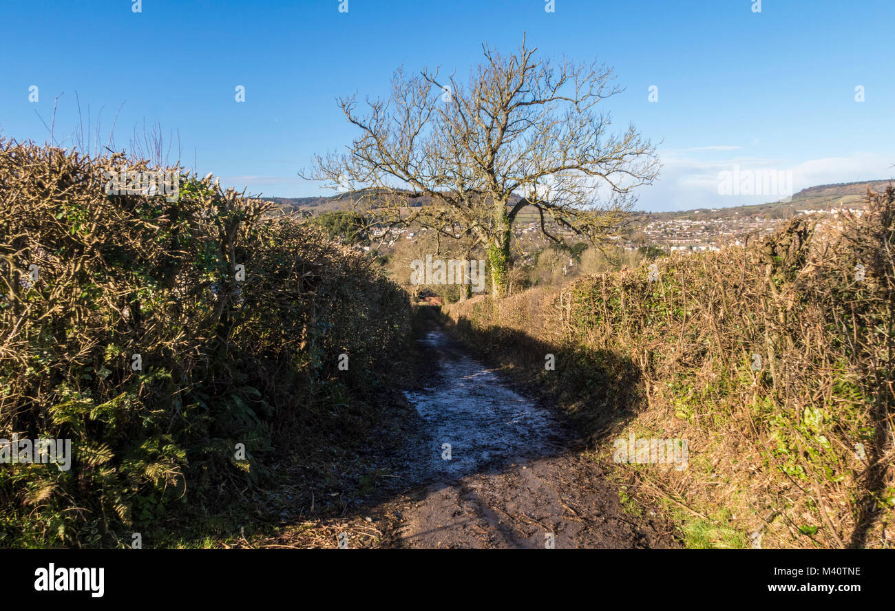 Milltown Lane, Sidmouth, a public bridleway climbing Soldiers Hill with views across Sidmouth and the Sid Valley - Stock Image