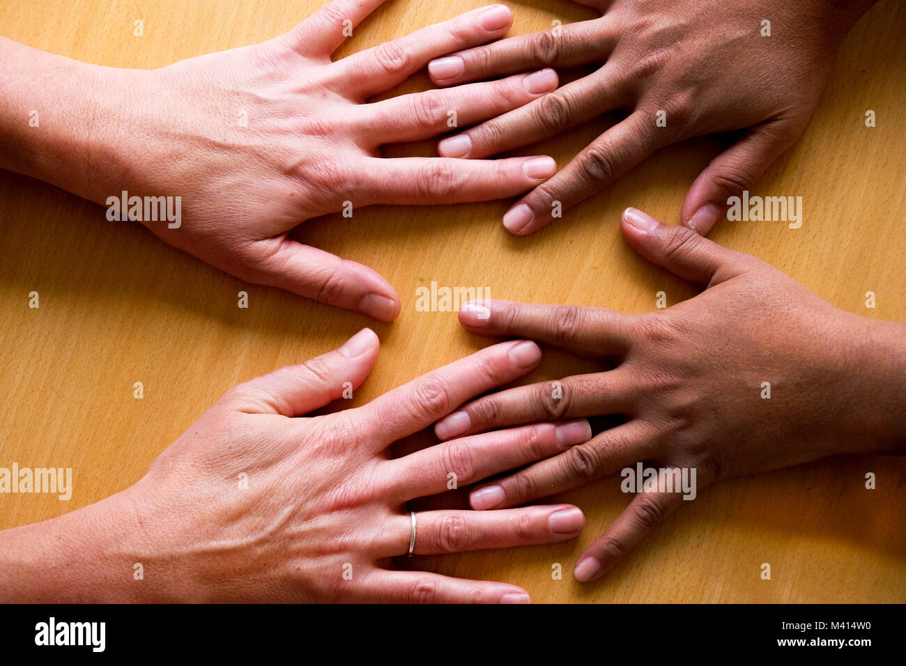 looking down on four fifty year old female hands spread out, lying flat on a table, the two hands on the left a - Stock Image