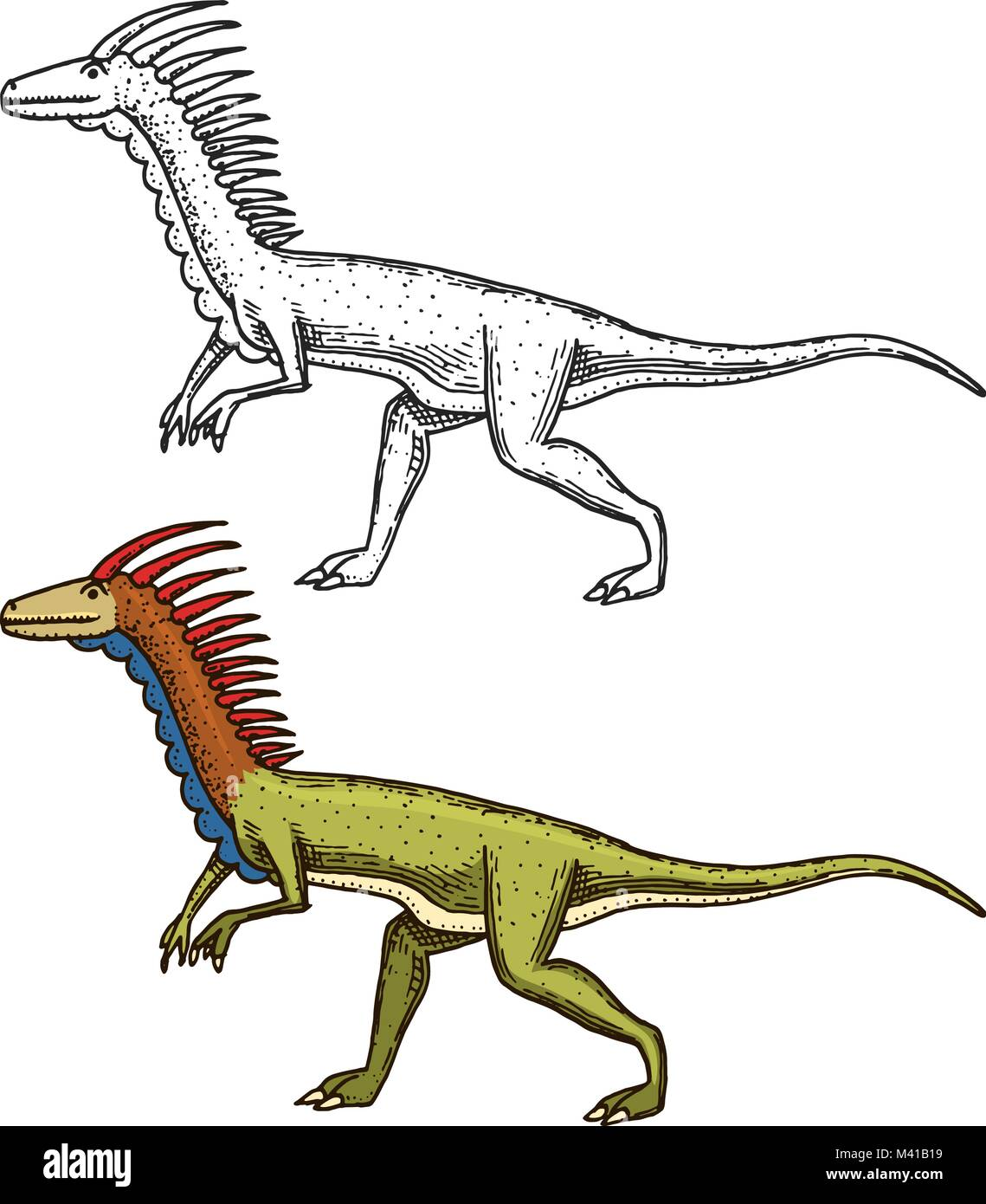 Dinosaurs deinonychus, skeletons, fossils. Prehistoric reptiles, Animal. engraved hand drawn in old sketch. - Stock Image