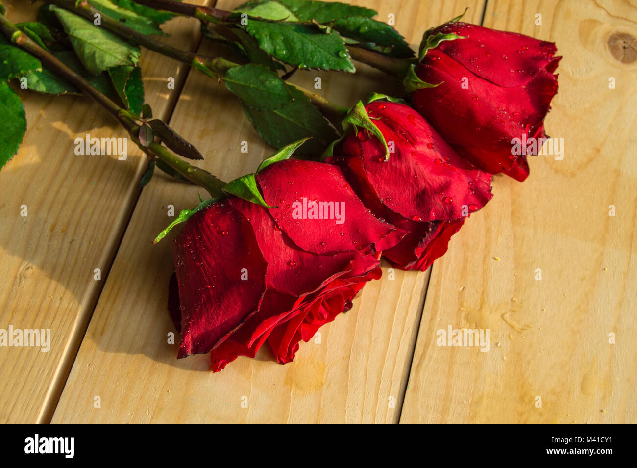 Red roses on wooden Board Valentines Day background, wedding day - Stock Image