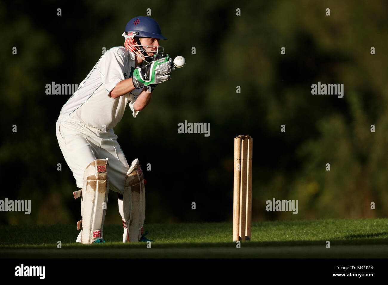 Cricket, wicket keeper in action. - Stock Image