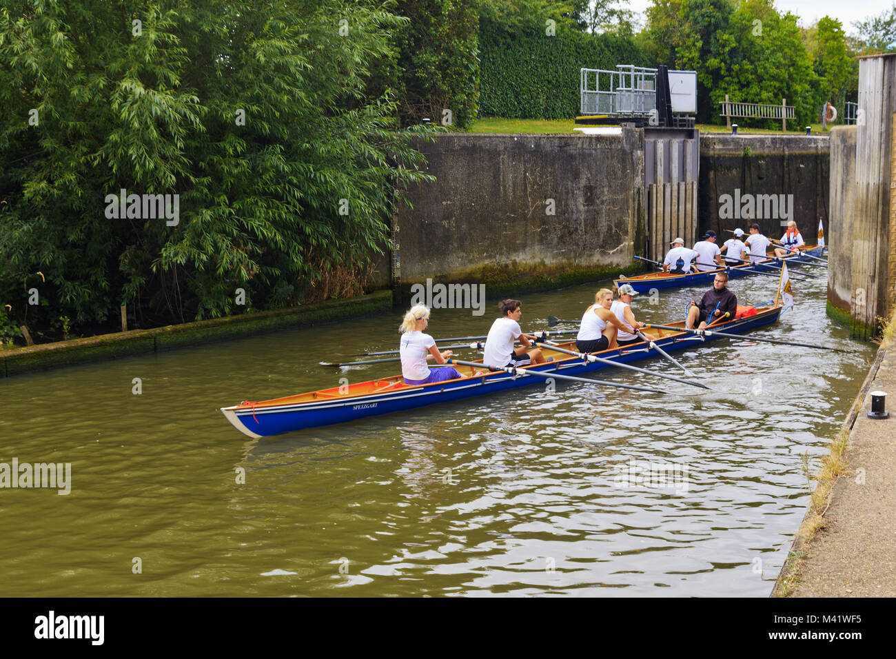 Skulls leaving Culham Lock on the River Thames Oxfordshire - Stock Image