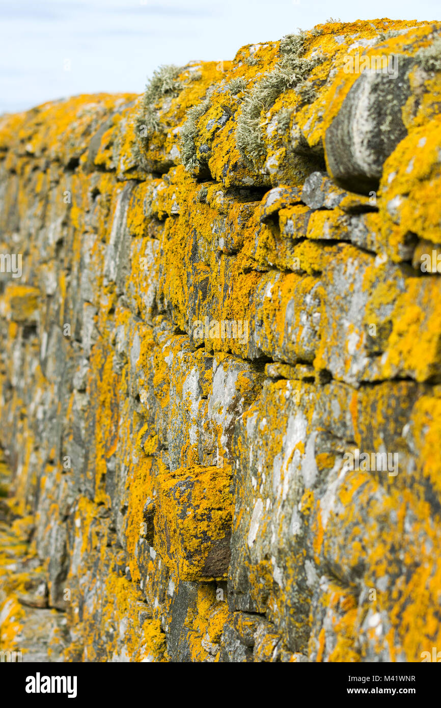 Lichen and moss covered stone walls - Stock Image