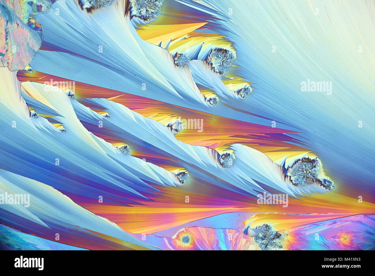 Crystals of a common painkiller Paracetamol. Microscope image, photographed in  polarized light. - Stock Image