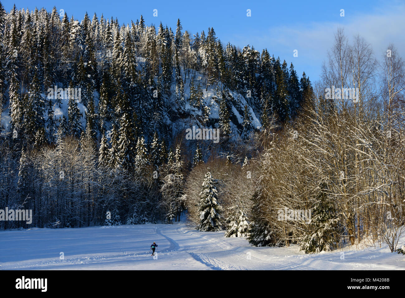 Its still early on this beautiful morning as the sun starts to drive away the shadows and this skier heads out into Stock Photo