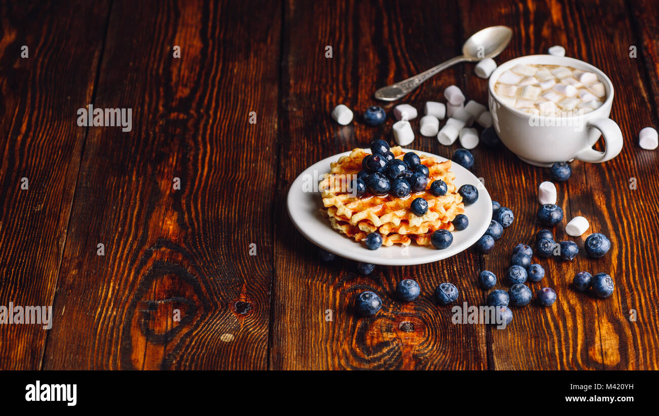 Waffles with Fresh Blueberry and Honey on Plate, Cup of Cocoa with Marshmallow.Copy Space on the Left. - Stock Image