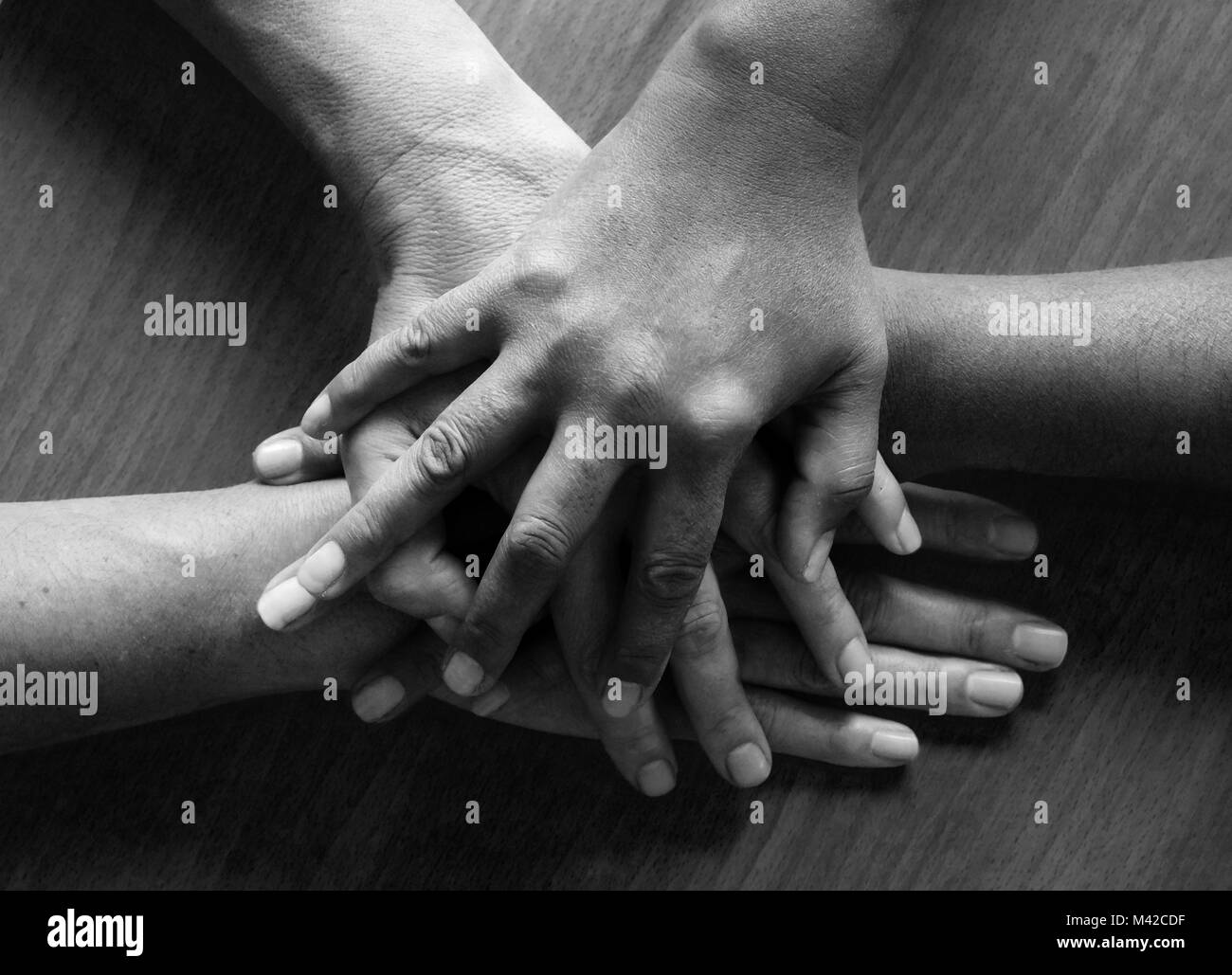 looking down on four fifty year old female hands placed ontop of each other, the top hand and third hand are Asian Stock Photo