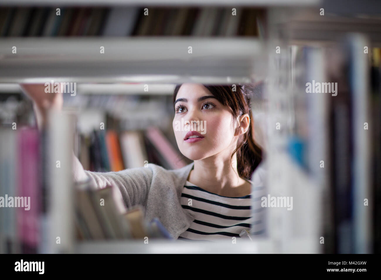 Student looking for a book in library - Stock Image
