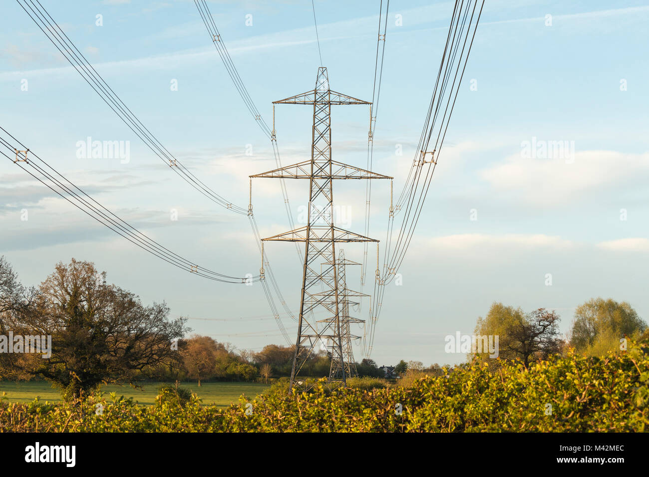 An evening shot of power lines in the countryside near Swithland, Leicestershire, England, UK - Stock Image
