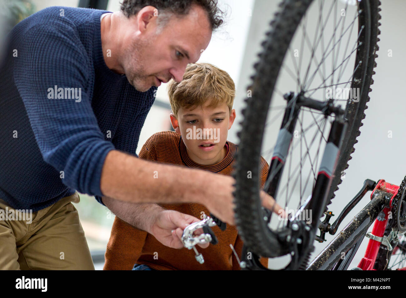 Father showing Son how to care for his bicycle - Stock Image