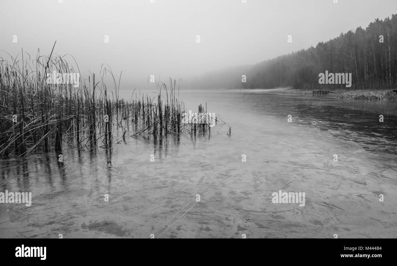 Misty Lake - Stock Image