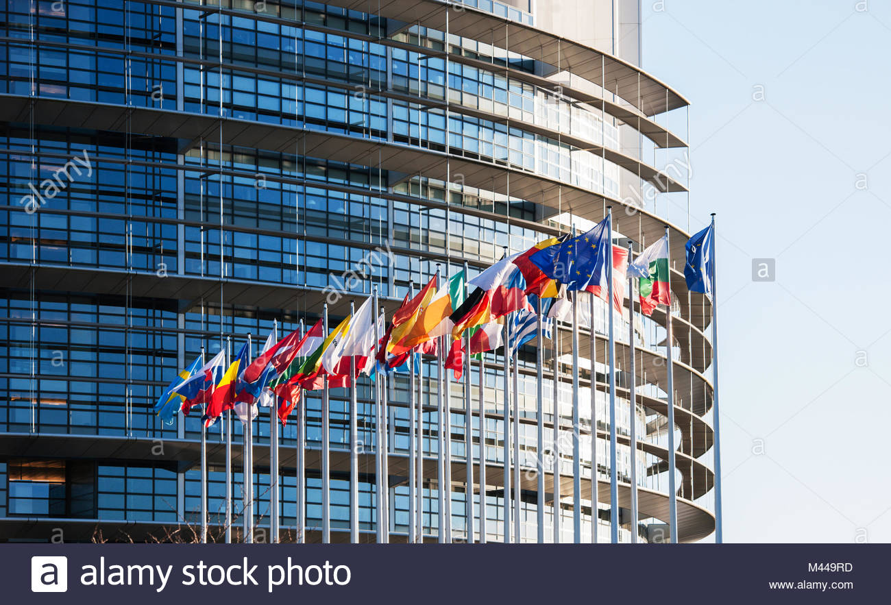 All European Union flags in front of parliament eu - Stock Image