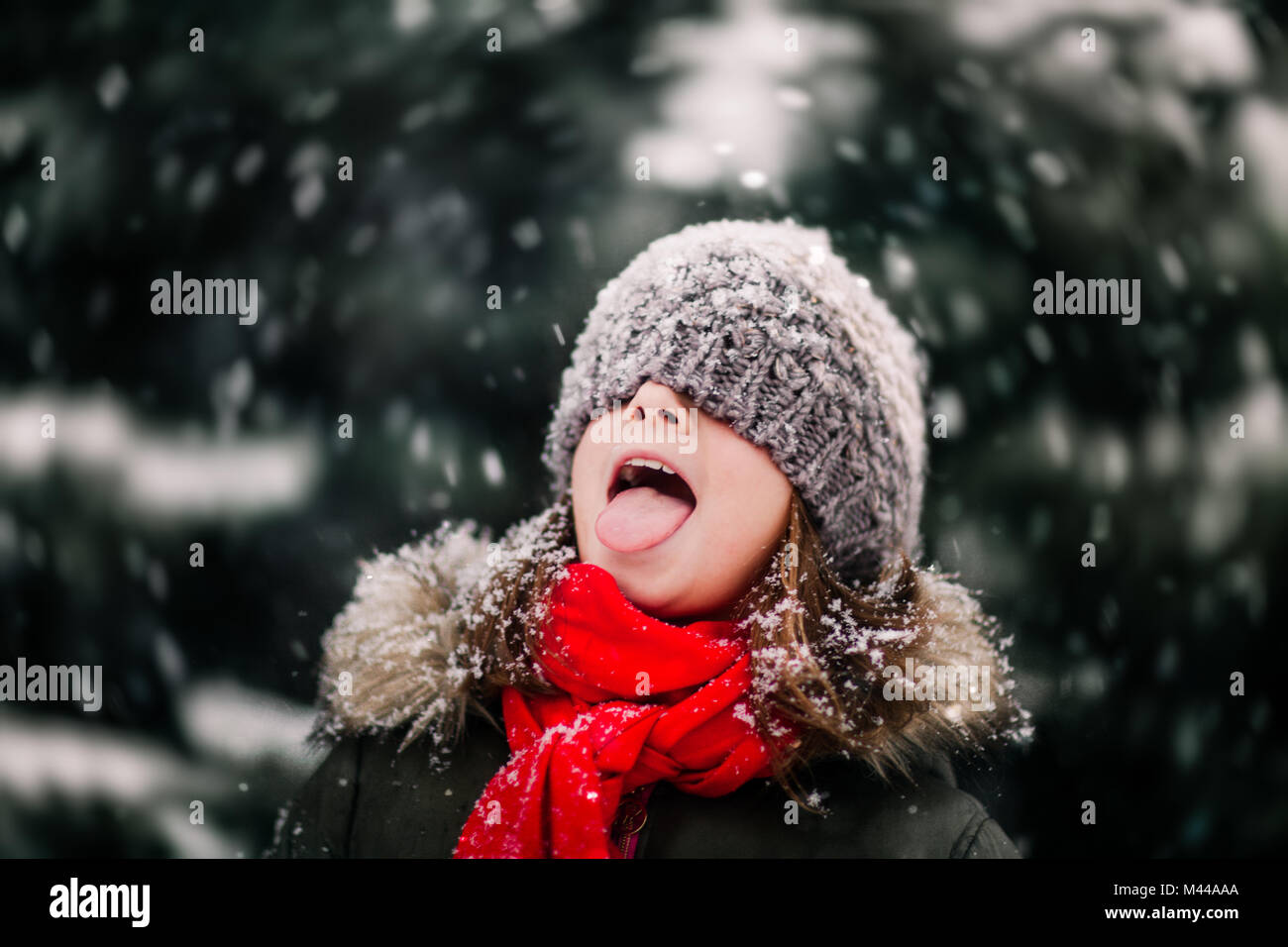 catching the snow Find and save ideas about snow quotes on pinterest | see more ideas about winter quotes, winter season quotes and winter love quotes  catch up with the entire.