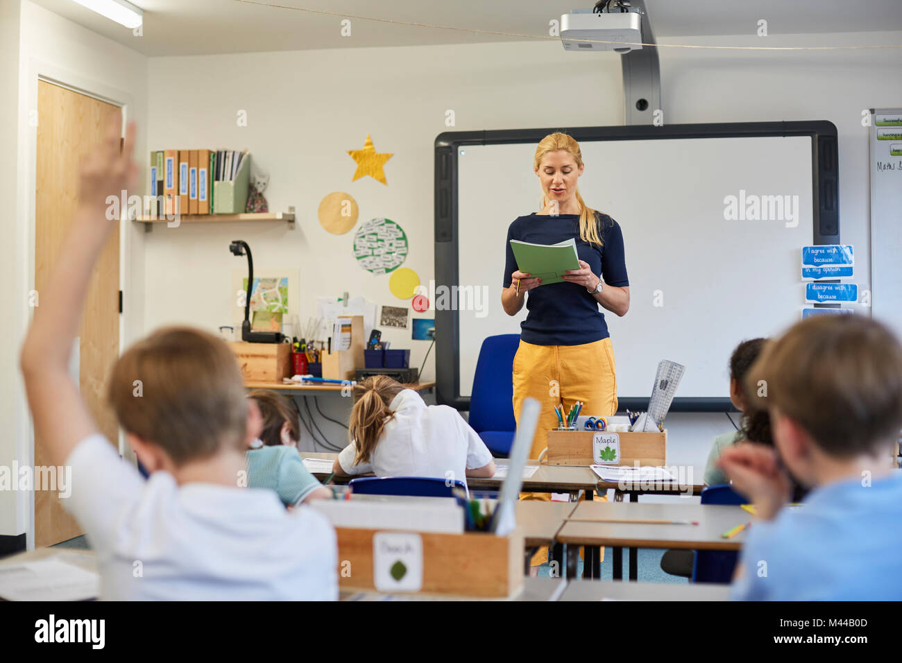 Schoolboy with hand raised in classroom lesson at primary school - Stock Image