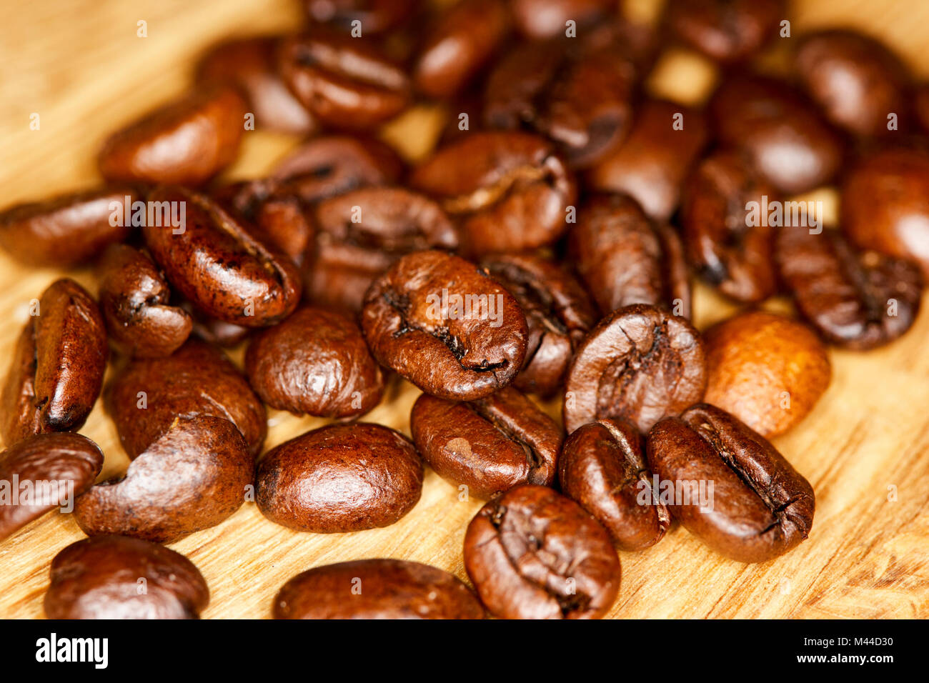 Robusta Coffee Stock Photos Images Alamy Green Bean Kopi Diet Java Arabica And Mix Of Shiny Roasted Beans Image