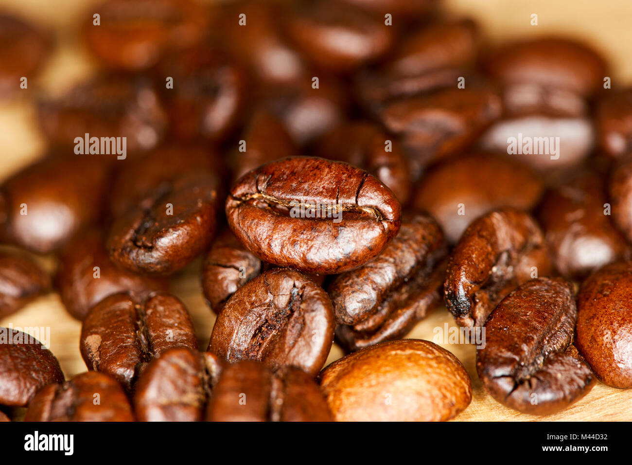 robusta and arabica blend of roasted coffee beans - Stock Image