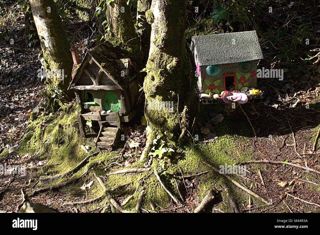 Fairy Houses left in the woods  Ireland has a history of
