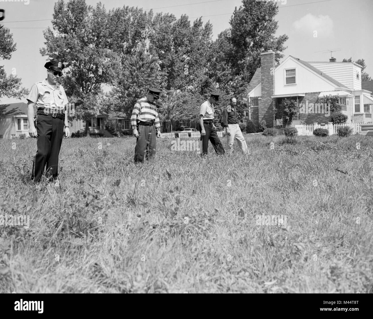 Police search a field for clues in a crime, ca. 1960. - Stock Image