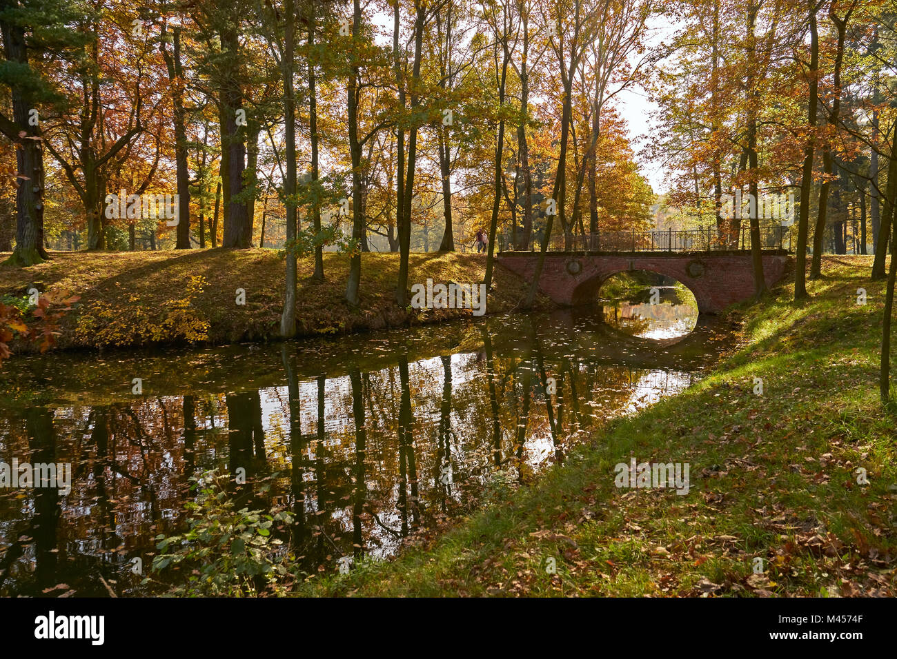 Autumn landscape - a park in golden colors, a waterway with a picturesque bridge over the glistening mirror of the - Stock Image
