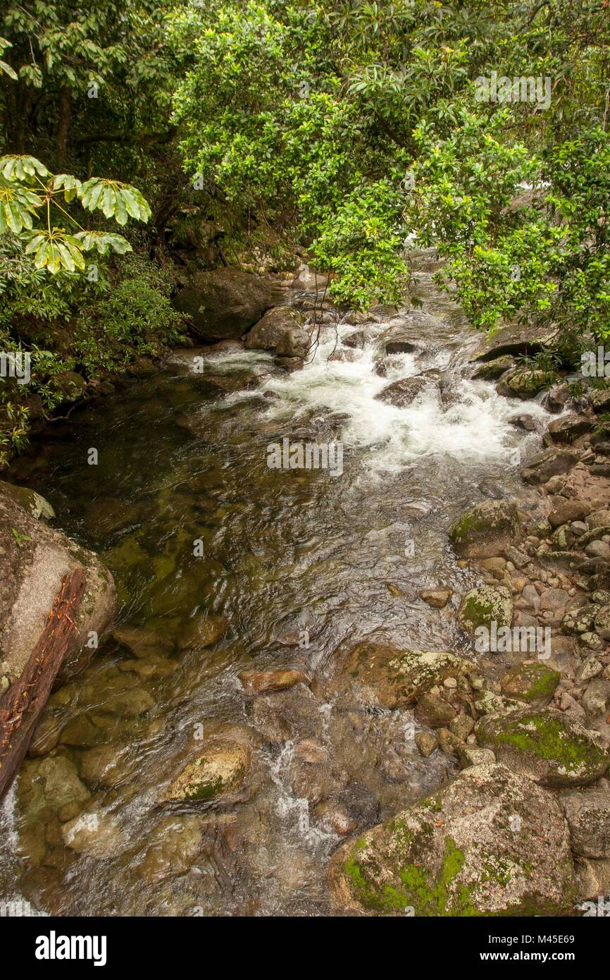 Mossman river at Mossman Gorge,  located in the Daintree National Park -  North Queensland - Australia  rushing Stock Photo