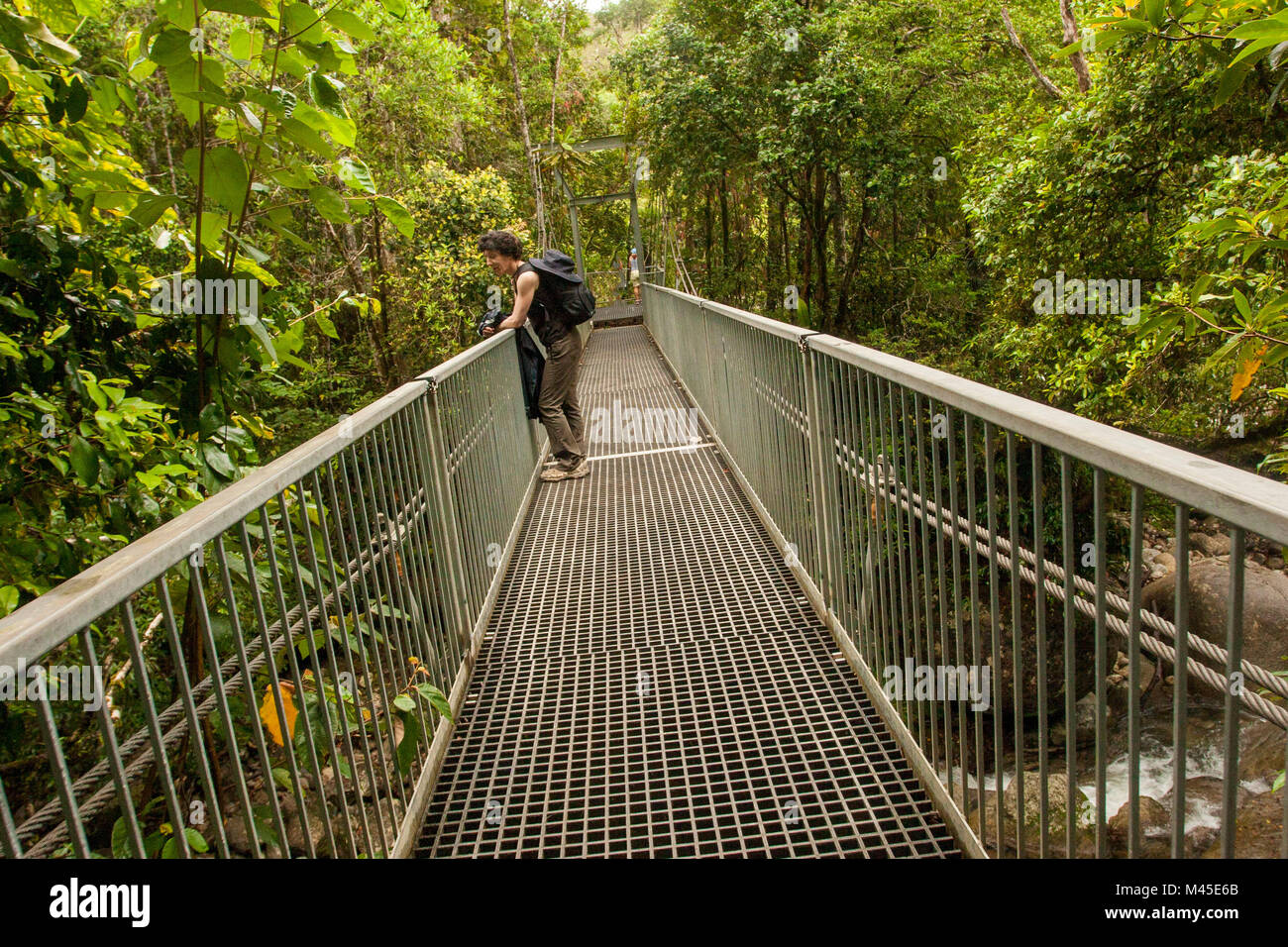 On the bridge across Mossman Gorge, Daintree National Park, North Queensland, Australia, Stock Photo