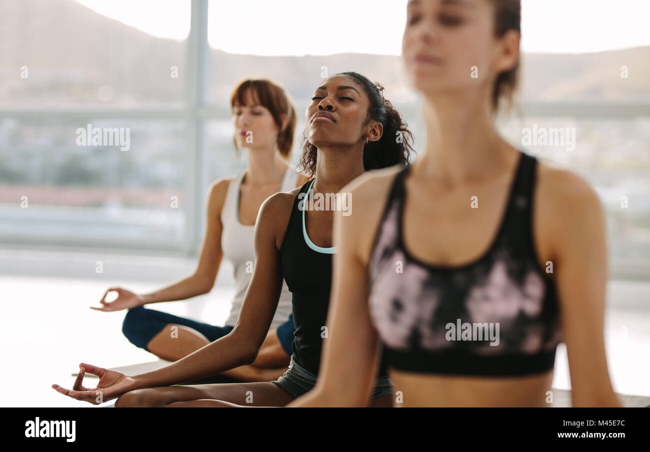 Fitness people sitting on floor with legs crossed doing yoga meditation. Group of people meditating in lotus pose - Stock Image