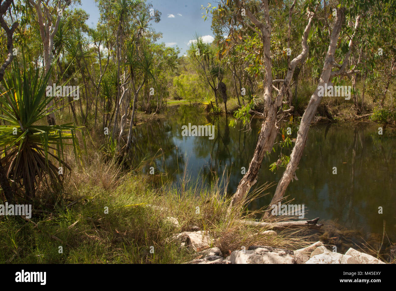Outback landscape in the Northern Territory of australia - Stock Image