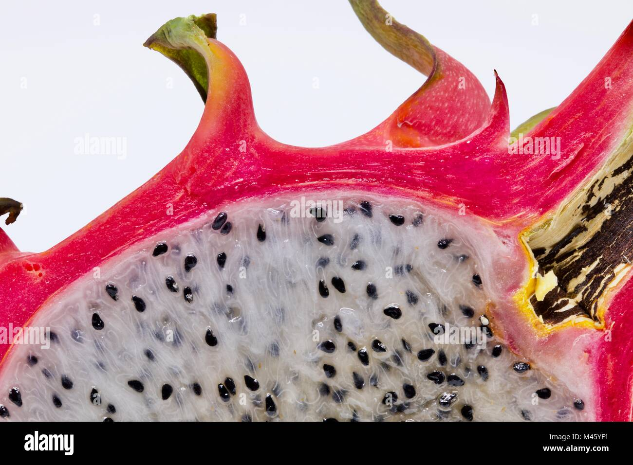 Dragon fruit (Hylocereus undatus) close up of the delicious fruit inside this unusual looking fruit - Stock Image