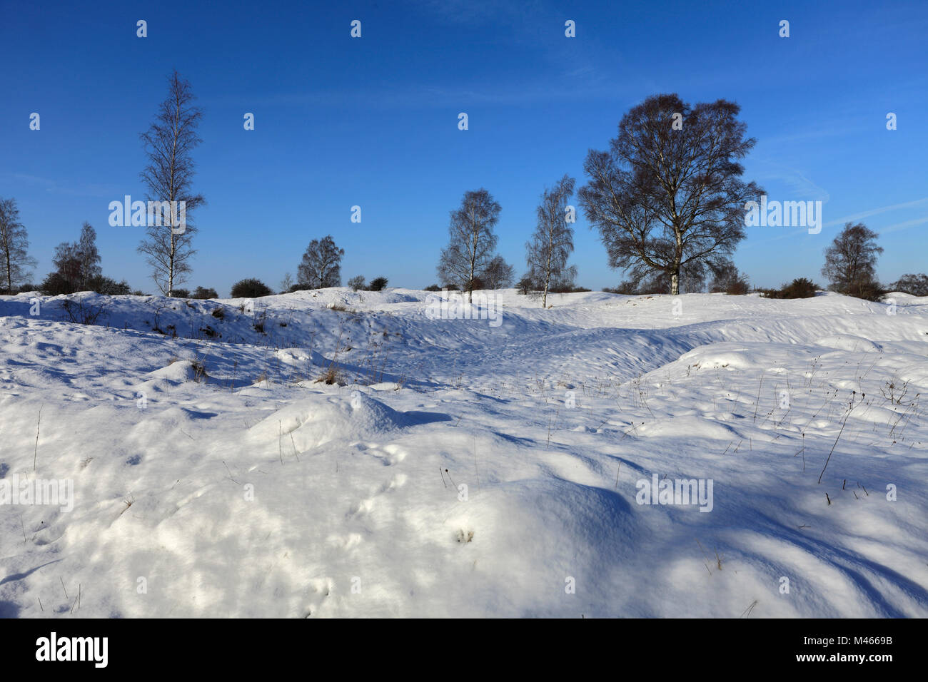 Winter snow at Barnack Hills N Holes, Site of Special Scientific Interest, Barnack village, Cambridgeshire, England, - Stock Image