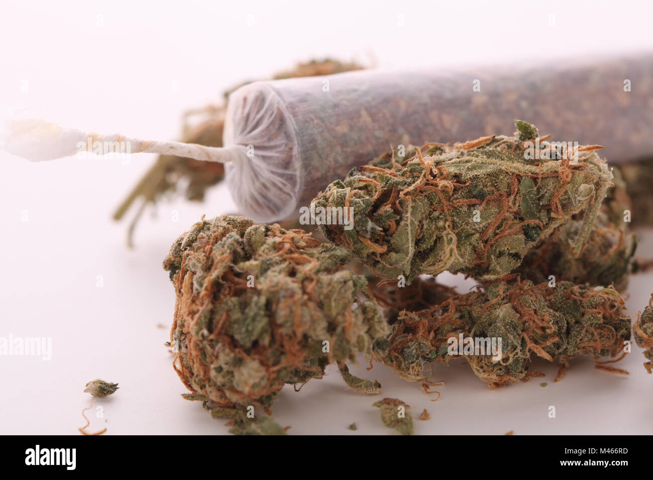 Close up of dried marijuana leaves and joint - Stock Image