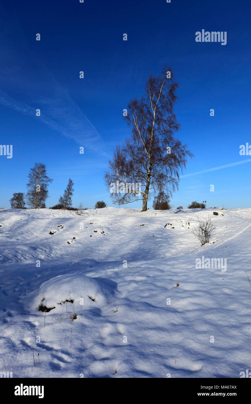Winter snow at Barnack Hills N Holes, Site of Special Scientific Interest, Barnack village, Cambridgeshire, England, - Stock Image