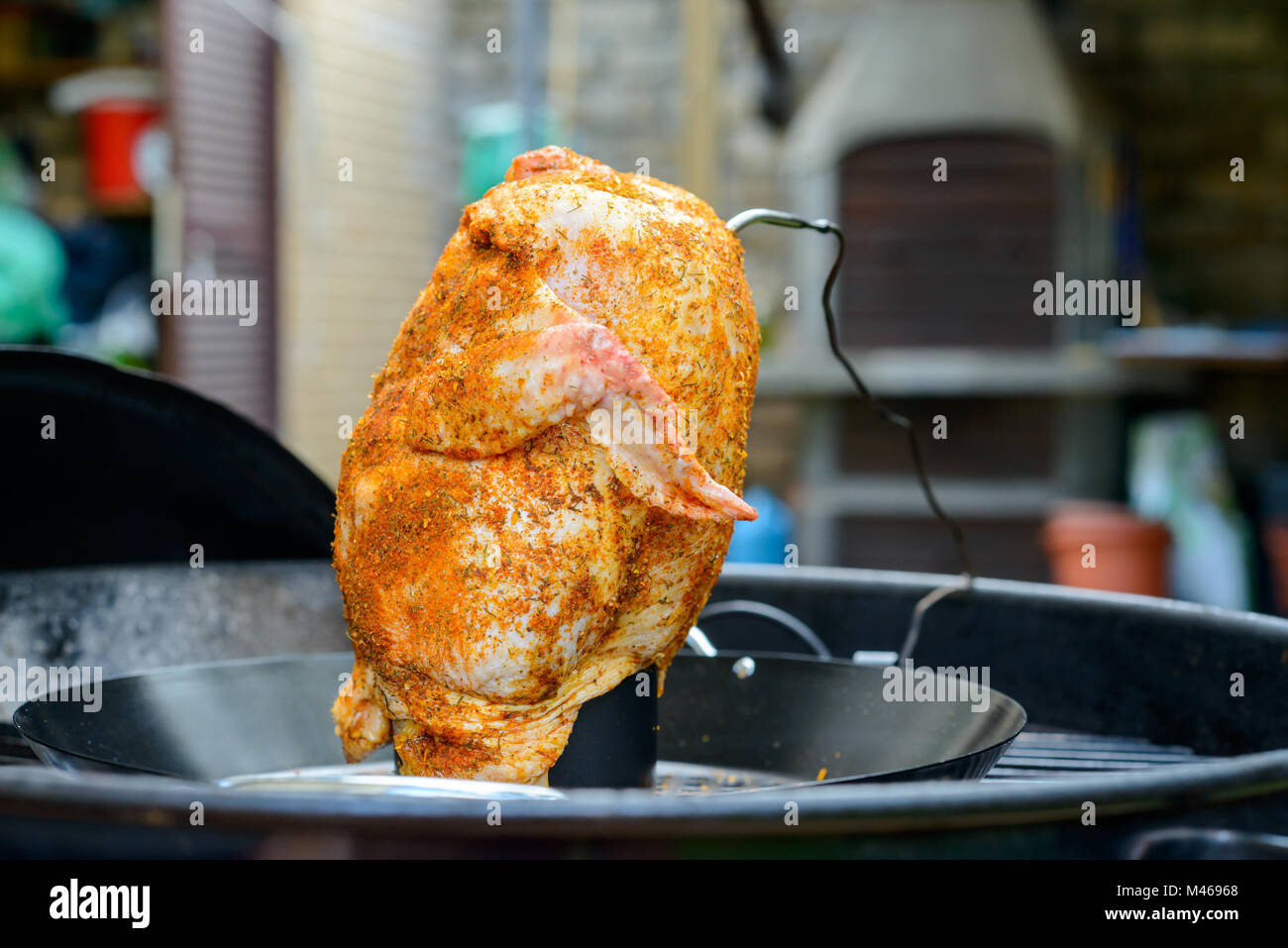 A Beer Can Chicken in a barbecue ready for grill, with paprika rub and temperature probe - Stock Image
