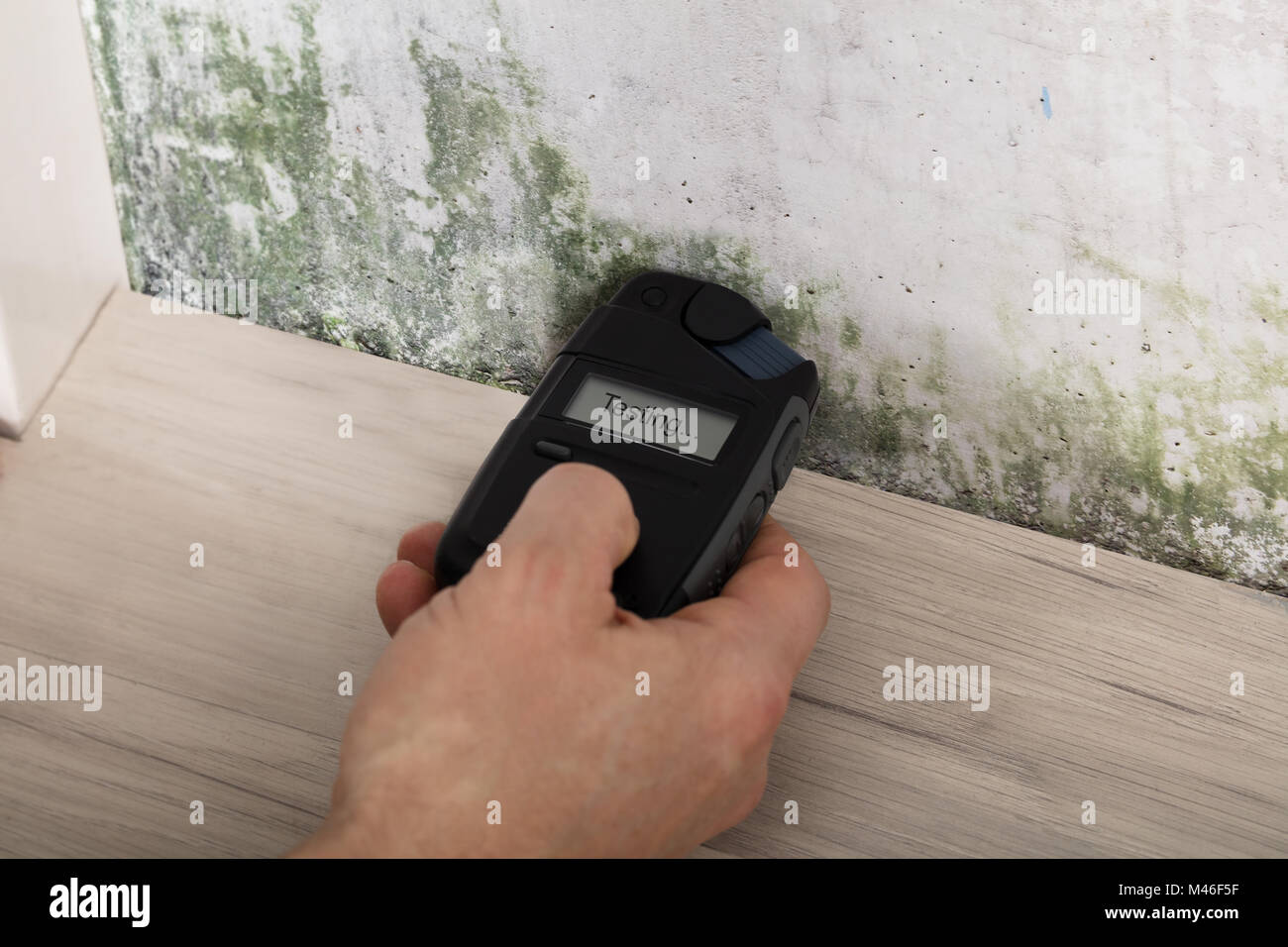 Person Hand Measuring The Wetness Off A Moldy Wall - Stock Image