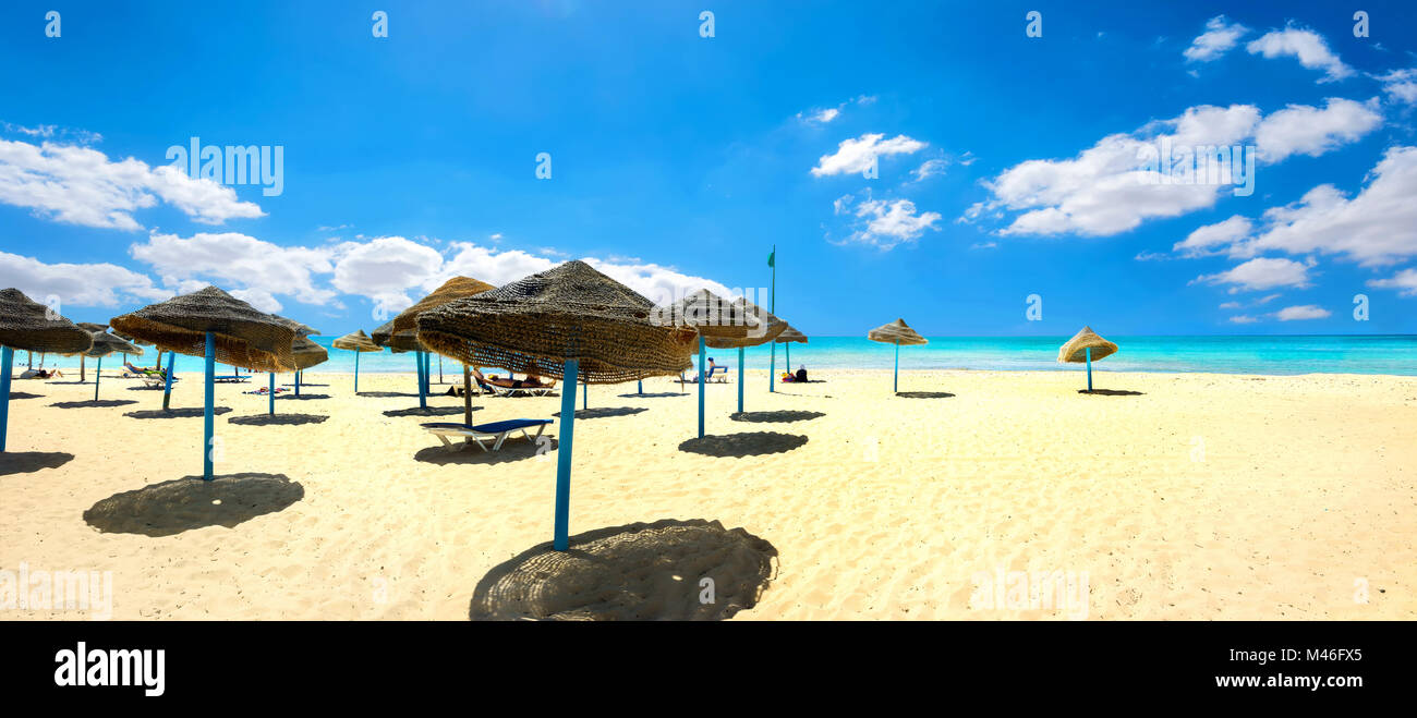 Panoramic landscape with sunshades on the sandy beach at sunny day. Nabeul, Tunisia, North Africa - Stock Image