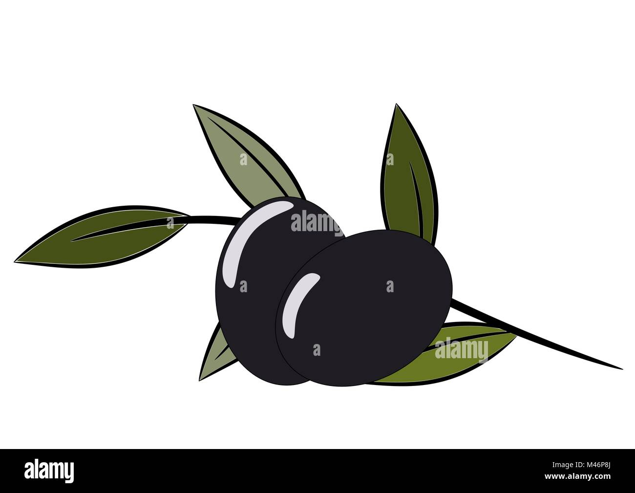 Olive tree twig with two olives, healthy food vector illustration - Stock Vector