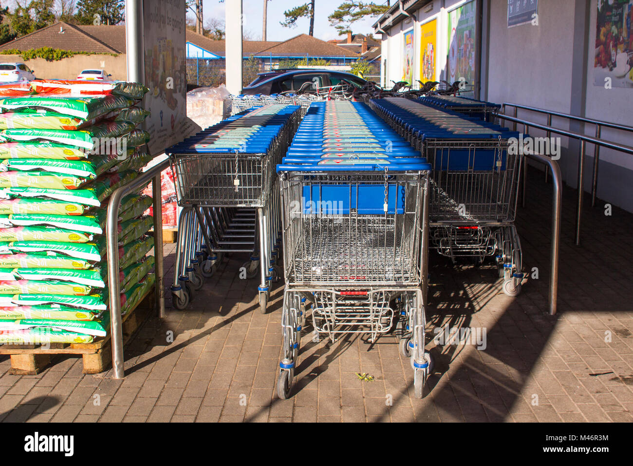 Shopping trolleys ready for customers at the front door of Lidl's supermarket in Bangor county Down Northern - Stock Image