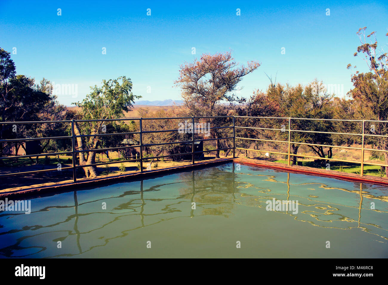 A warm water pool filled from the local warm water springs at the Warmwaterbergspa campsite in the Klein Karoo, - Stock Image