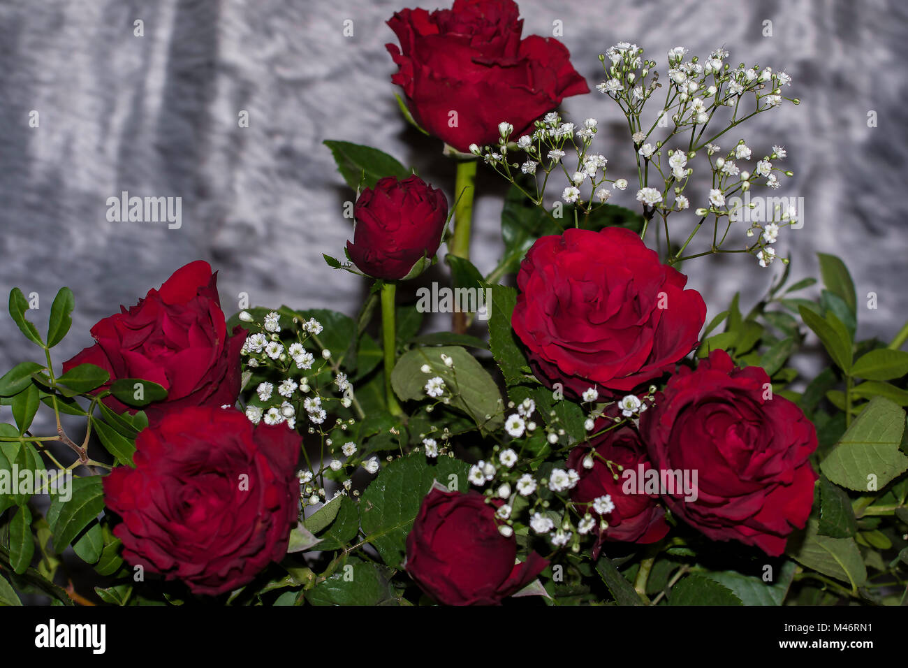 Small Rose Red Flowers Stock Photos Small Rose Red Flowers Stock