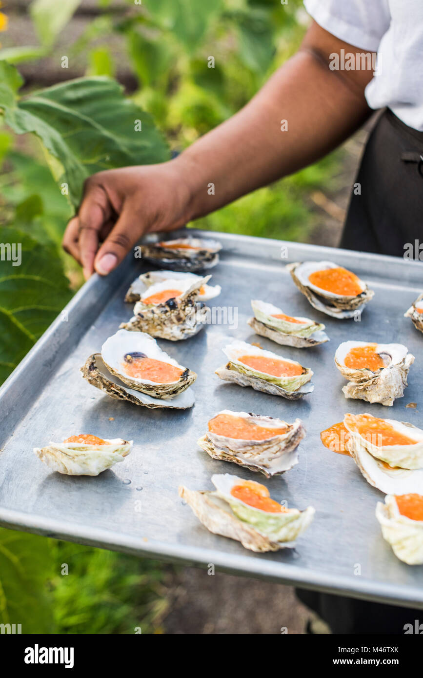 Repurposed Oyster shells at a food event. - Stock Image