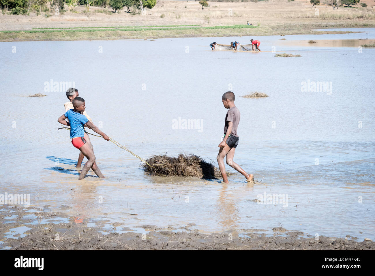 Children Fishing in Lake with Bales of Grass for a Net, Madagscar Stock Photo