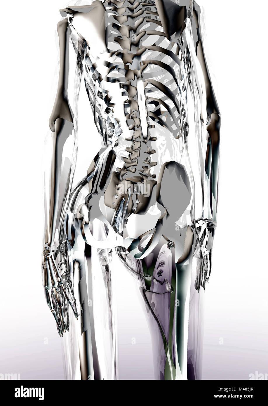 Gläserner weiblicher Körper - Glassy female body - Stock Image