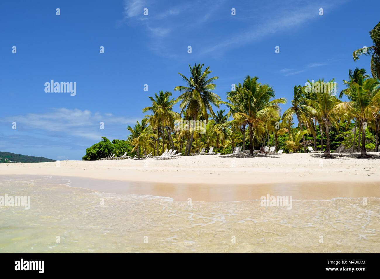 Beautiful island in the caribbean sea with white sand and turquoise water, Dominican Republic, palms, sunbeds, blue - Stock Image