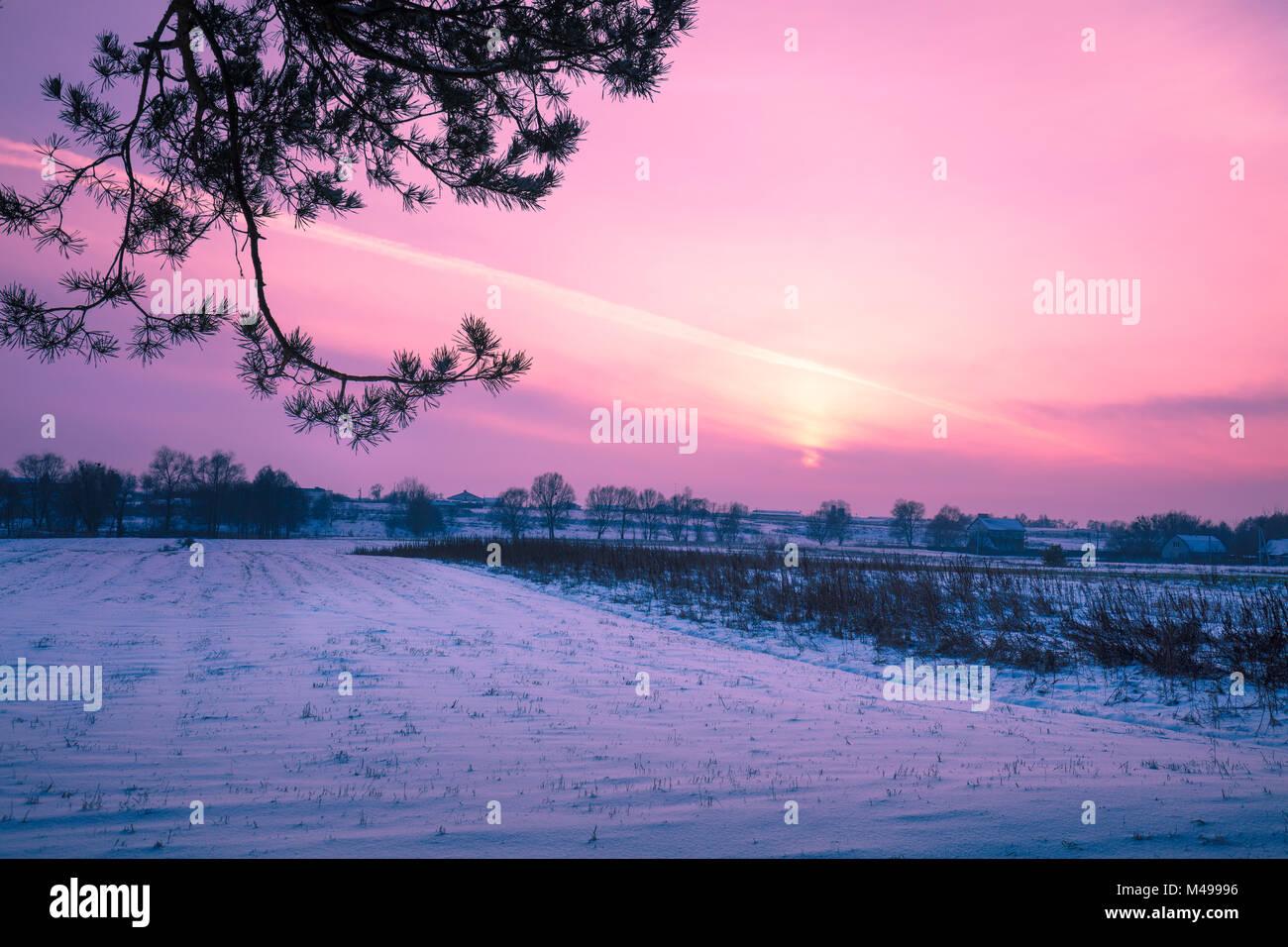 Snowy winter field at sunset light - Stock Image