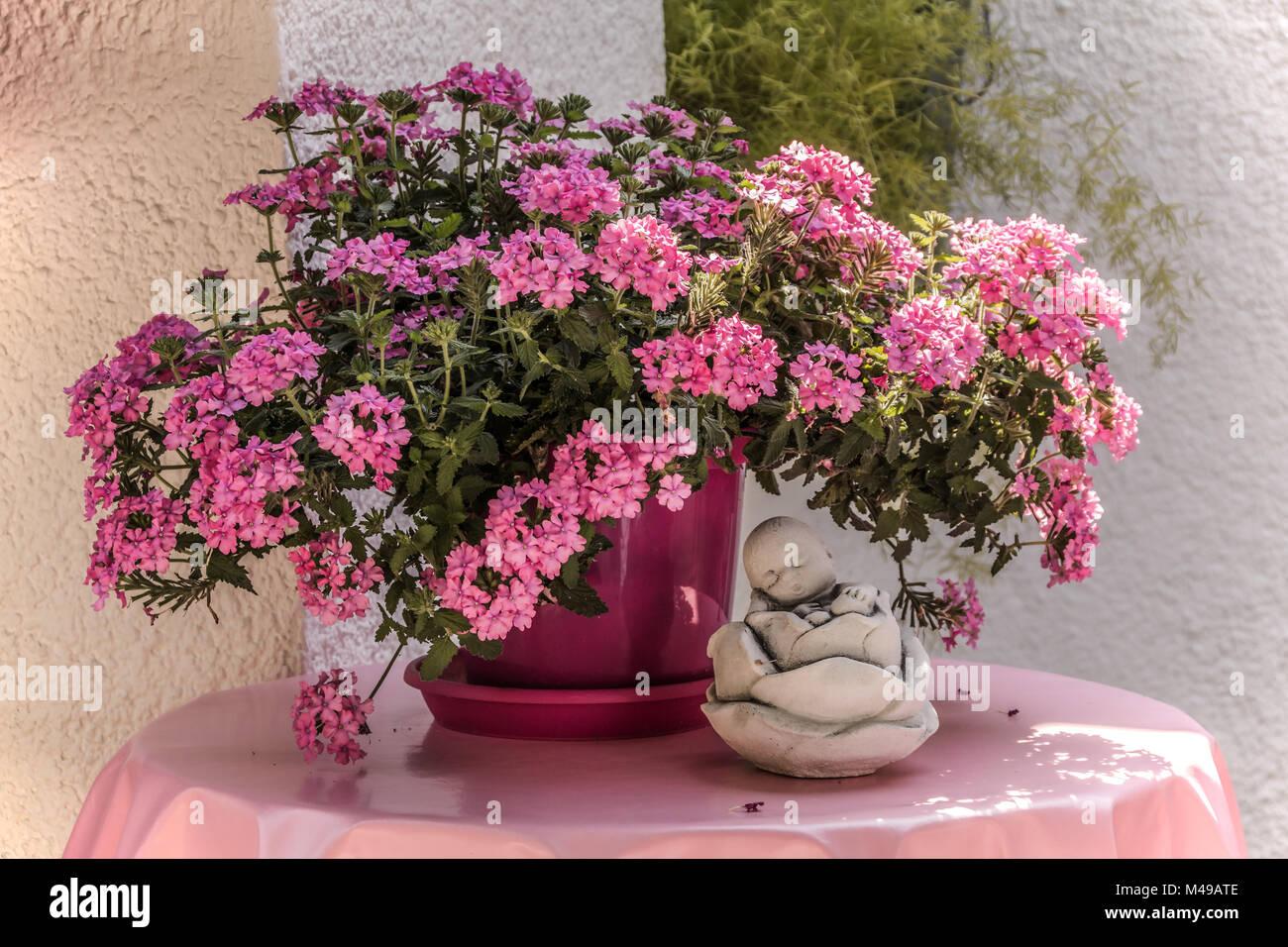 Deko in Pink, geranium with sound figure - Stock Image