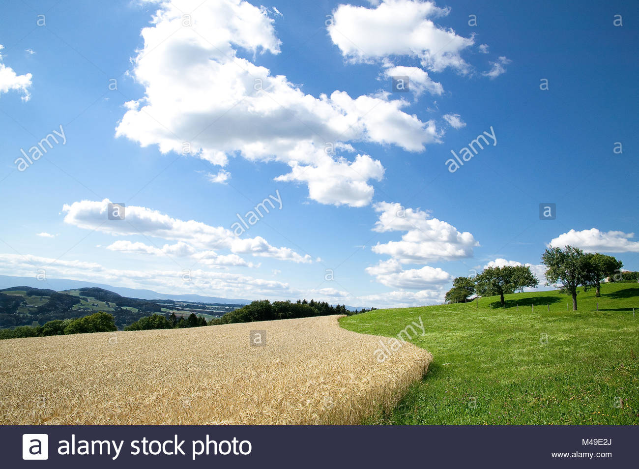 windows xp wallpaper stock photos & windows xp wallpaper stock