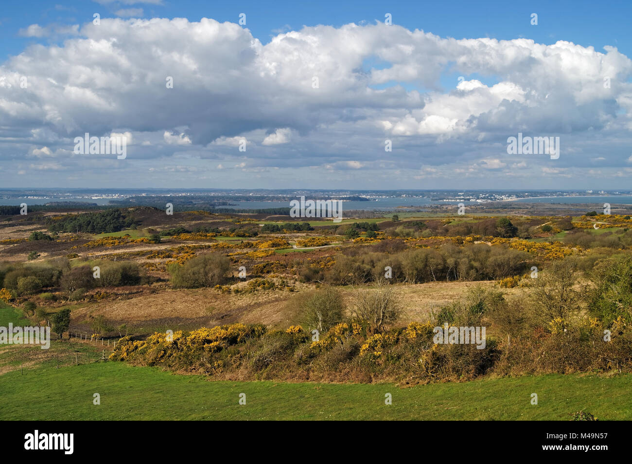 UK,Dorset,Isle of Purbeck,Newtown Viewpoint with Isle of Purbeck Golf Club,Godlingston Heath & Poole Harbour - Stock Image